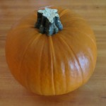 No more cans!  4 easy steps to making your own pumpkin puree!