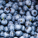 Blueberries – Superfood and Super Yummy!