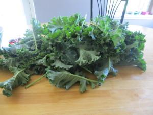 Crazy for Kale!