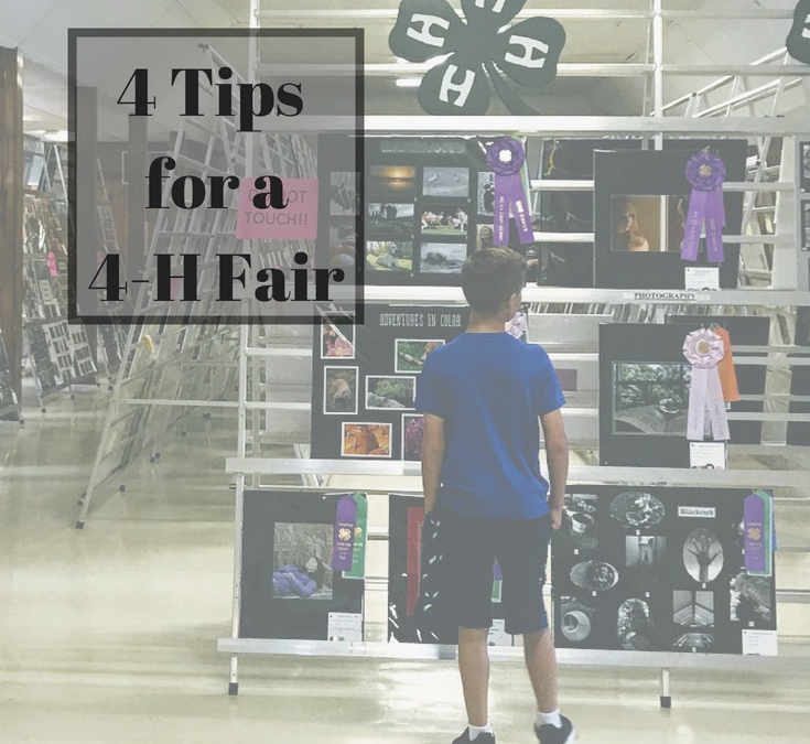 4 Tips for the 4-H Fair