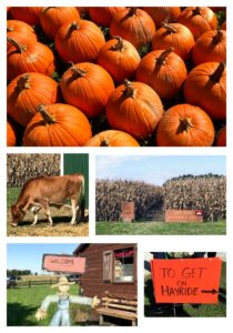 Fall Pumpkin Fun at Russell Farms in Noblesville, Indiana