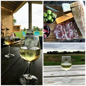 Everyday Adventures at Urban Vines in Westifield, Indiana
