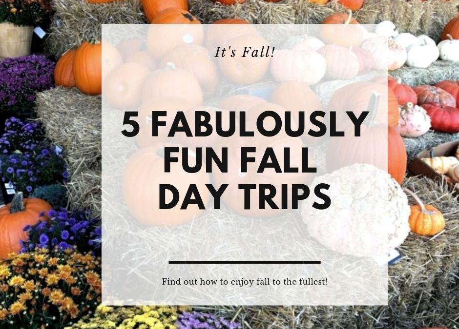5 Fabulously Fun Fall Day Trip Ideas