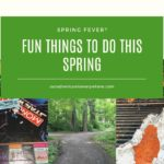 5 Fun Things to Do in the Spring
