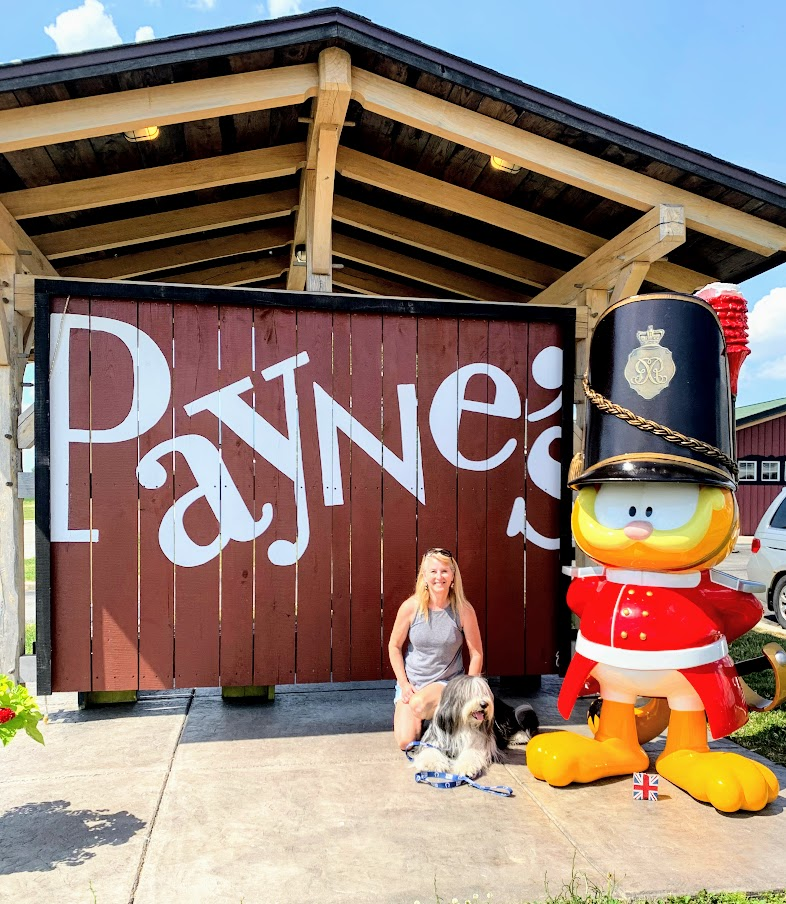 Garfield at Payne's in Gas City, part of the Garfield Trail.