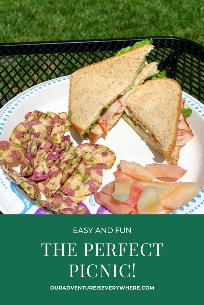 Ready to pack the perfect picnic? From where to go to what to bring, you'll get inspiration on the best picnic foods, terrific picnic locations and what else you shouldn't forget for an easy, fun picnic! #picnicfoods #summerfun #ouradventureiseverywhere