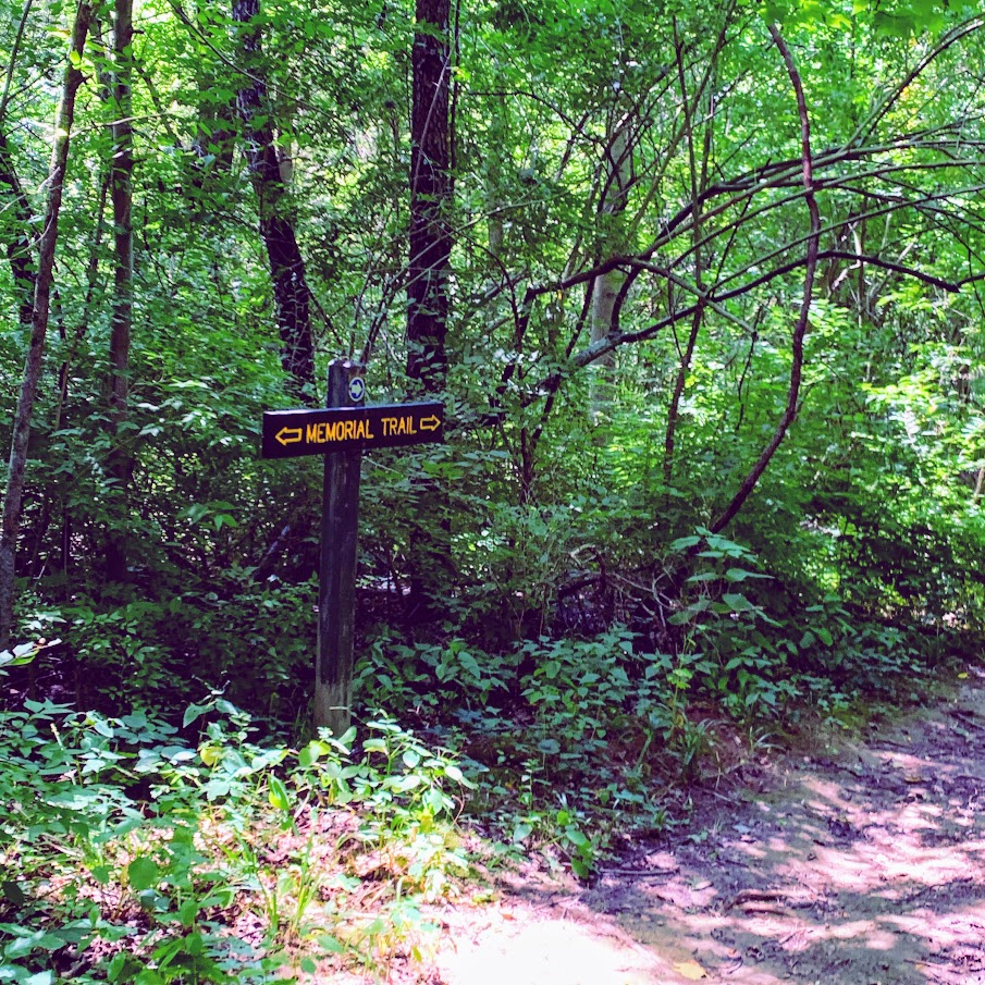 Whitewater Memorial State Park hiking trail - hidden Indiana adventure