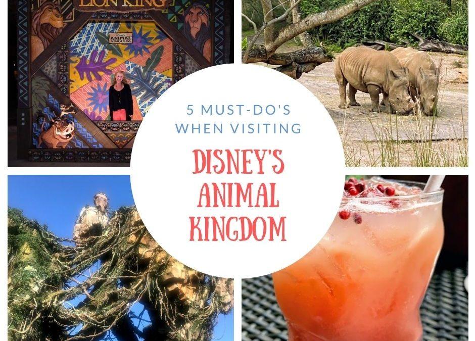5 Must-Do's at Disney's Animal Kingdom