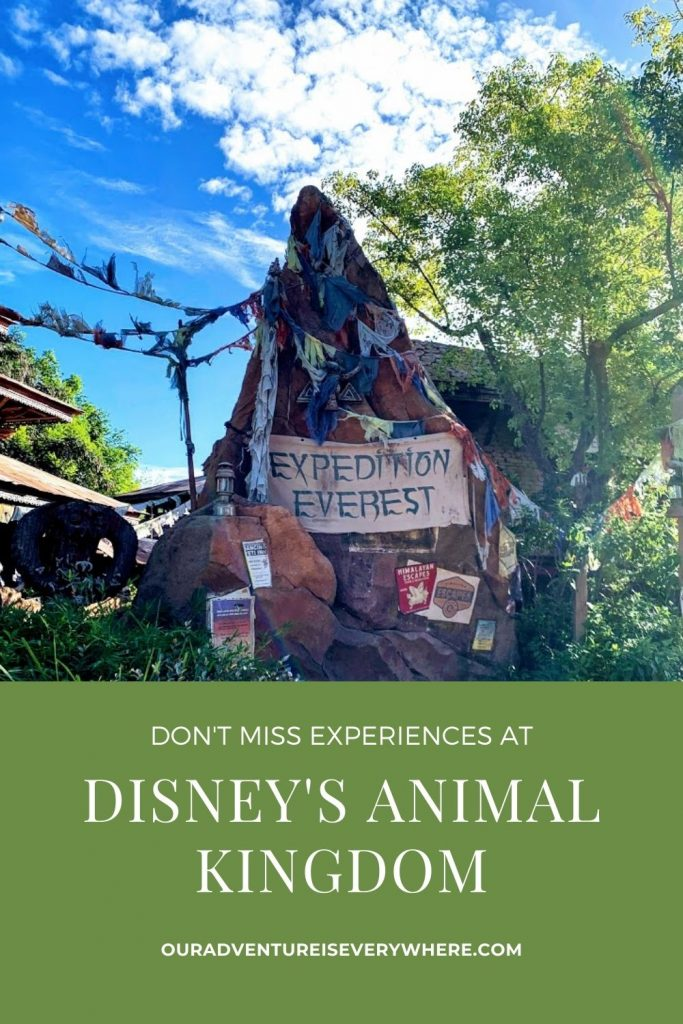 Do you have a trip planned to Disney's Animal Kingdom? If so, be sure to enjoy these 5 things and I guarantee you'll have a great day! #disney #ouradventureiseverywhere #vacationplanning
