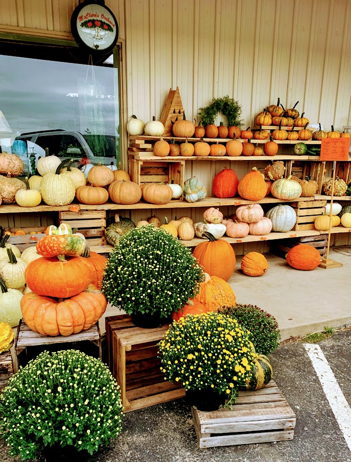 All your fall decorations can be found at McClure's Orchard in Miami County, Indiana