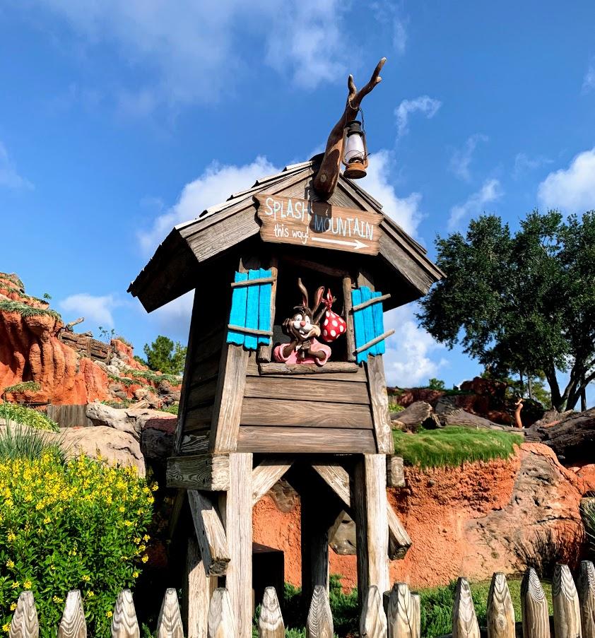 Have fun on Splash Mountain at the Magic Kingdom