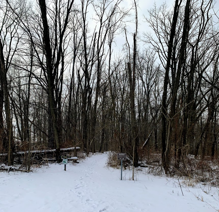 Hiking can be a fun way to spend a winter day.