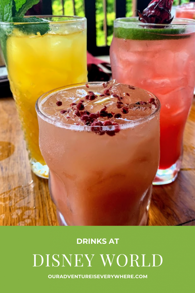 Visiting Disney World and want to know where to find the best drinks? Although Disney is fun for families, it can also be a lot of fun for adults! So, if you are adulting at Disney, be sure to check out one (or more) of these tasty drinks. #disney #disneydrinks #funcocktails